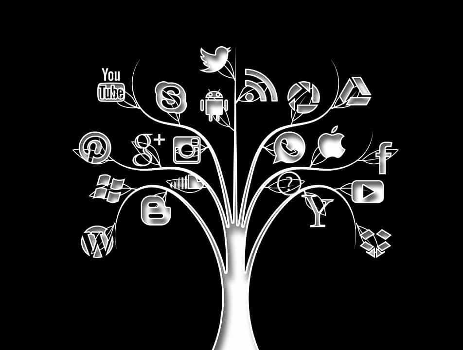 Social Media Marketing Somerset